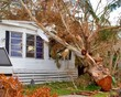 disaster damage tax deduction